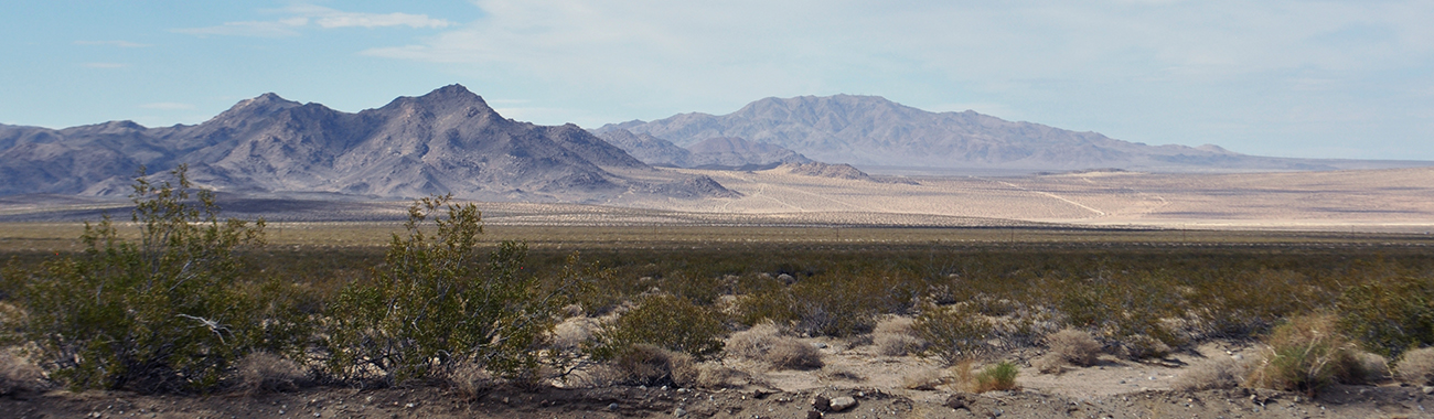 photo - lucerne valley